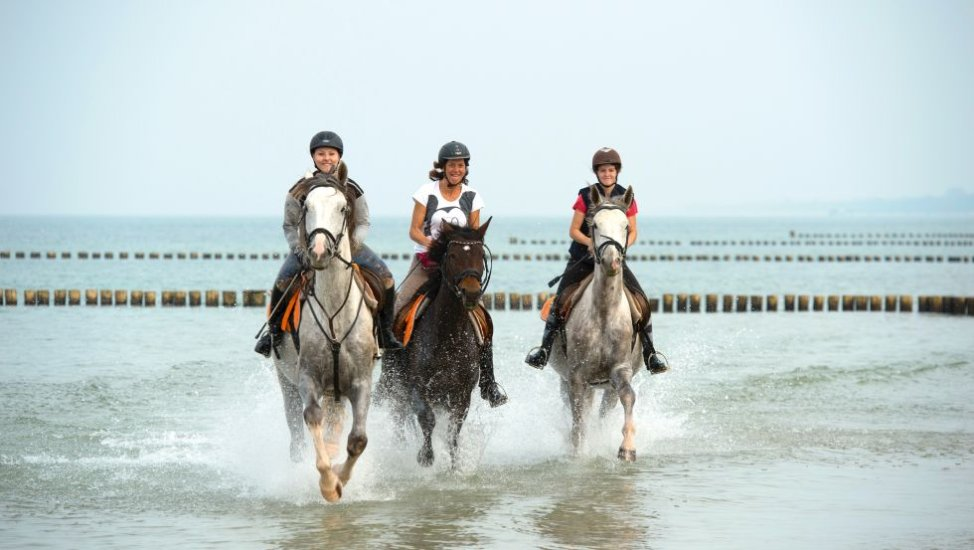 Horseback riding on the Baltic beach, © TMV, Frank Hafemann